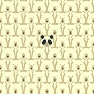 A PANDAS STORY