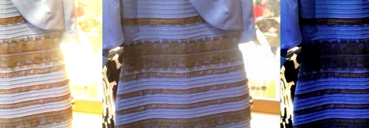 The Dress Color Debate and Sensory Processing in Autism