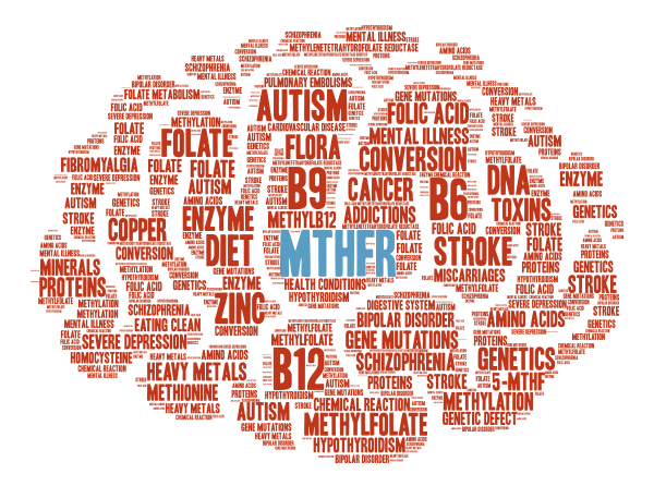 Autism & MTHFR Explained
