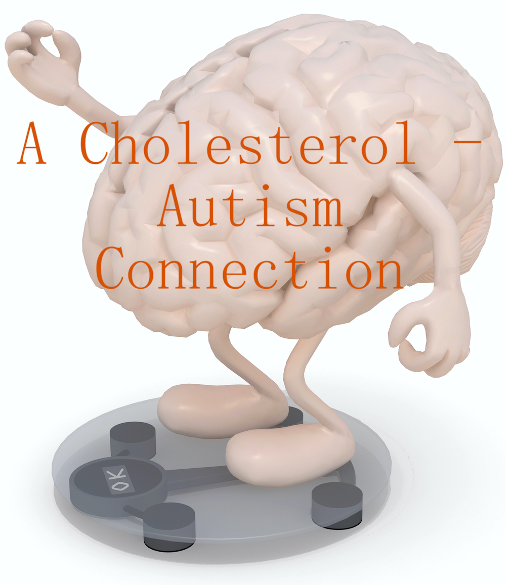 A Cholesterol – Autism Connection