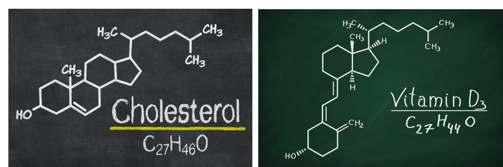Cholesterol Vitamin D similarities